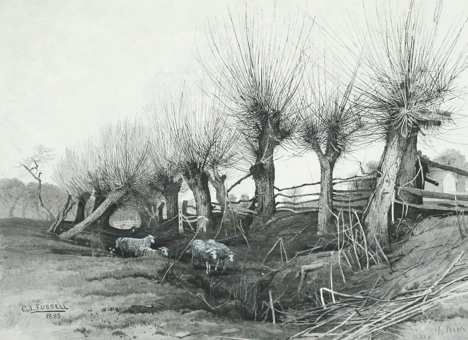 Sheep Wandering through a Gully (Charles Lewis Fussell)
