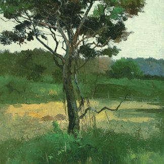 Flatbush (Charles Lewis Fussell)