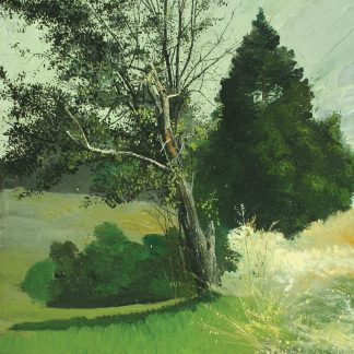 Trees in a Meadow (Charles Lewis Fussell)