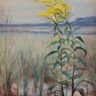Goldenrod in the Sand (George Cochran Lambdin)