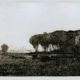 Landscape with Trees (Robertson Kirtland Mygatt)