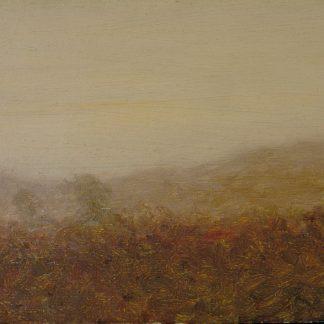 Overcast Valley (Robertson Kirtland Mygatt)