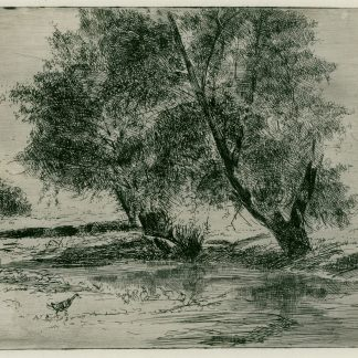 Pond with Duck and Willows (Robertson Kirtland Mygatt)