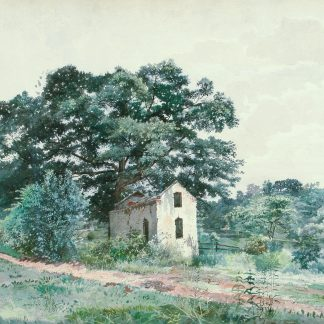 Abandoned House on a Country Road (Charles Lewis Fussell)